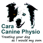Cara Canine Physio - Treating your dog as I would my own